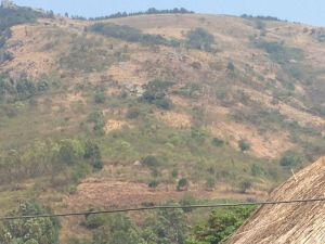 Honde Valley during the dry season